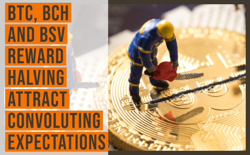 BTC, BCH and BSV Reward Halving Attract Convoluting Expectations