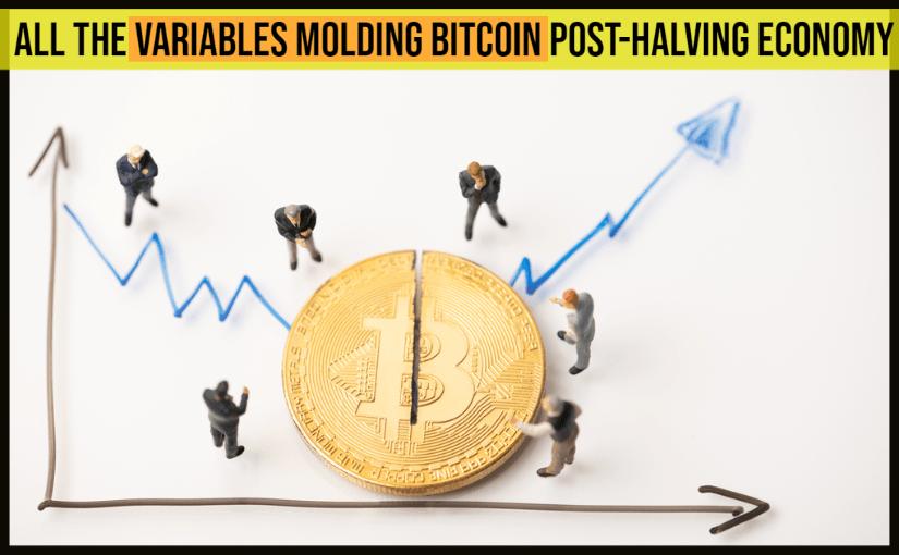The Bitcoin Economy Post Halving