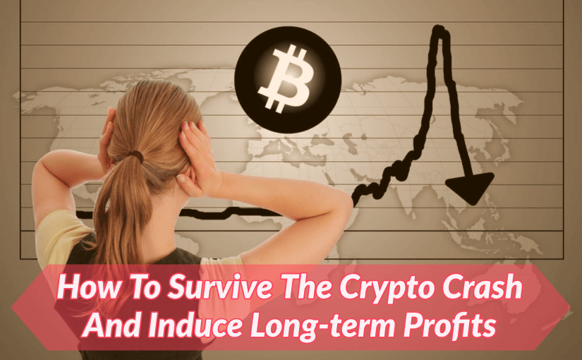 How To Survive The Crypto Crash And Induce Long-term Profits